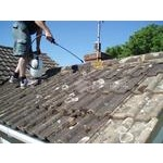 Applying fungicide to roof tiles
